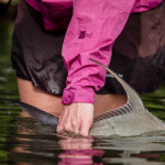 Bryan Gregson_FLY FISHING-2