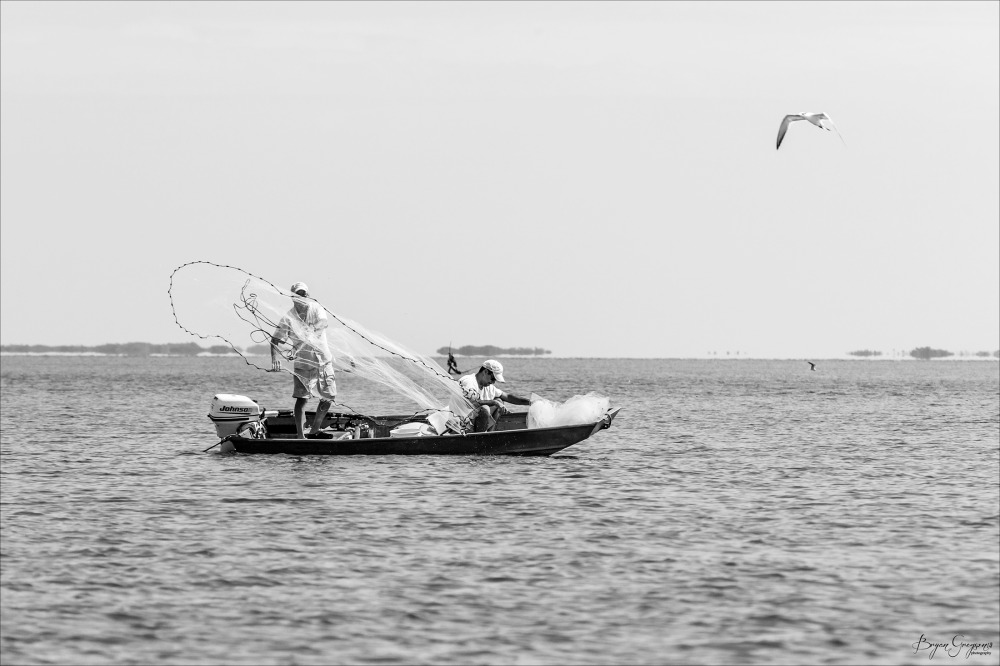 Throw-Net_BG-Belize_IMG_0726-2