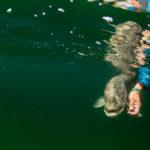 gregson_underwater-201