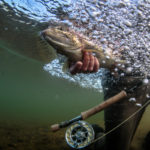 gregson_underwater-103
