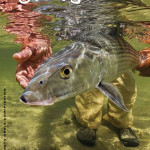 Orvis_Bonefish Cover SF14