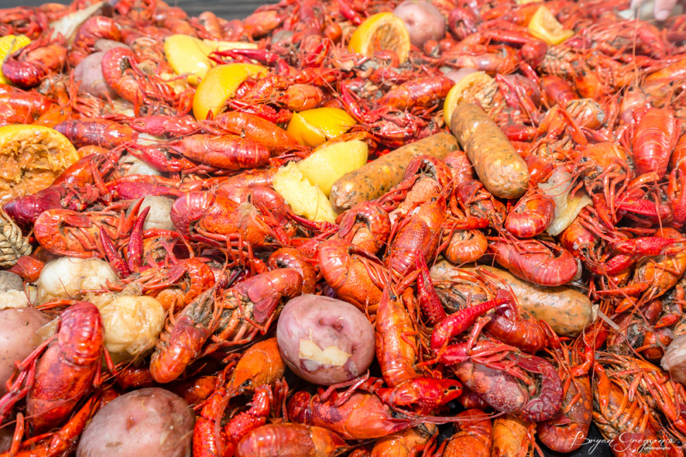 Gregson_Louisiana Redfish-8